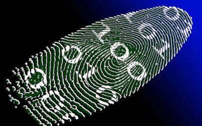 Cyber – PCI Fines